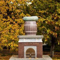 Первый памятник овощу на территории Украины, Нежин