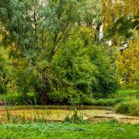 Графский парк, Нежин