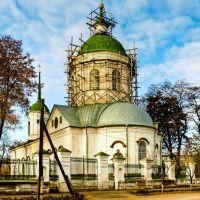 Церковь Василия Большого, 1788 г., (ул. Васильевская, 39), Нежин