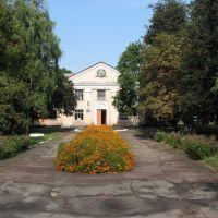 Будинок культури, Носовка