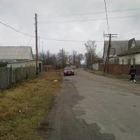 вул. Шевченка, Носовка