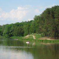 Еловщина, Чернигов