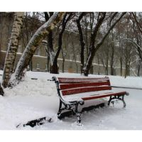 bench, Чернигов