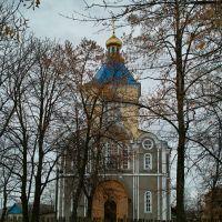 Церква у Щорсі - Church in Shchors, Щорс