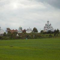 Свято-Анненский монастырь P1030781, Вашковцы