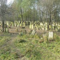 Jewish cemetery in Vashkivtsi, Вашковцы