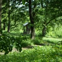 старый колодец в гор.парке., Герца