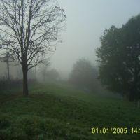 PIC_0039, Глыбокая