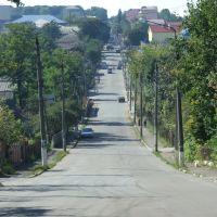 Zastawna - ulica Niezależności, Заставна