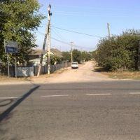 Родная улица, Кельменцы
