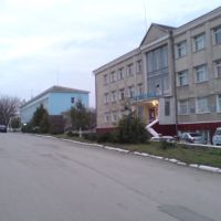 K.P.D., Кельменцы