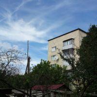 Slums, Кельменцы