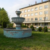 Больница, Кельменцы