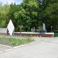 Алея павших героев ВОВ, Кельменцы