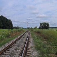 Місце, де була станція Кельменці, Кельменцы