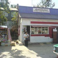 Bus station, Кельменцы