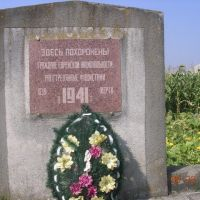 Mass grave of 839 jews, massacred by romanian soldiers, On 5 July 1941- Novoselytsia, Новоселица