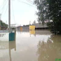 Наводнение2008, Новоселица