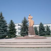 тарас шевченко, Новоселица