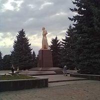 P.T. SHEVCHENKO,NOCELYTYA, Новоселица