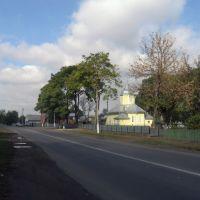 біля церкви, Новоселица