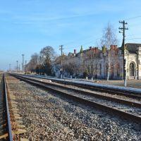 Станція Новоселиця, вид з колій, Новоселица