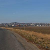 Село Строїнці, Новоселица