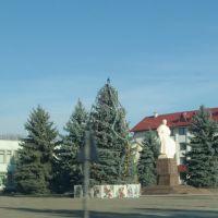 Новоселица. Центр, Новоселица