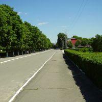 Вид на аллею возле центральной площади, Сокиряны
