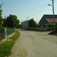 вул. Пушкина, Сокиряны