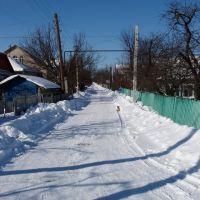 Зима на моей улице, Сокиряны