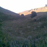 Чернівецька область, Сокиряни, катакомби, Сокиряны