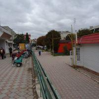 вул. 28-го Червня, Сокиряны