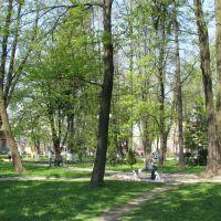 Park in Storozhynets, Сторожинец