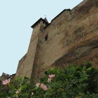 Хотинська фортеця (XIII - XVIII ст.) / Khotyn. Castles-Fortress., Хотин