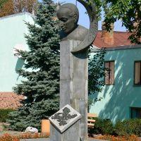 Poet Paul Celan (1992), Черновцы