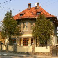 Frunze street, 45. Former Karlgasse, Черновцы