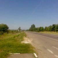 дорога, Береговое
