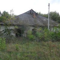 Заброшенный дом около жд. станции Хоросница / Abandoned house near the railway station Horosnitsa, Береговое