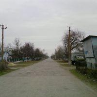 ул.Варовского, Ботаническое
