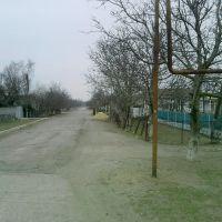ул.Мира, Ботаническое