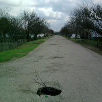 ул.Садовая, Ботаническое