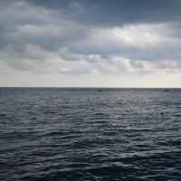 Морской простор, Кореиз