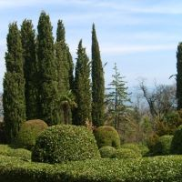 Yalta/Livadia sarayı bahçesi, Ливадия