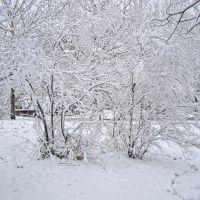 Снег у школы, Мисхор