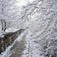 Снежная тропинка, Мисхор