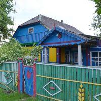 Казковий будинок у с. Олива / Fabulous house in the village Oliva, Олива