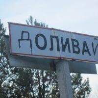 Вїзд до села Олива зі сторони Кухарів, Олива