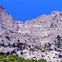 Крымские горы Форос, Санаторное