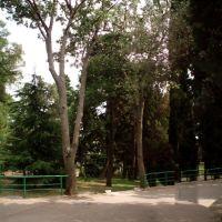 Парк в Мелласе, Санаторное